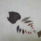 落葉樹のメタファー