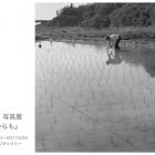 江平龍宣 写真展『これからも』