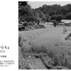 江平龍宣 写真展「これからも」